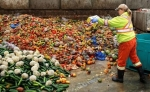 homepagethenationalfoodwaste